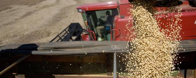 Estímulos para los pequeños productores de granos