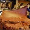 Brasil: Exportación de cuero alcanza los $ 256 millones en septiembre