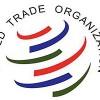 """Azevêdo destaca un """"incremento espectacular"""" del componente del comercio asociado al conocimiento"""
