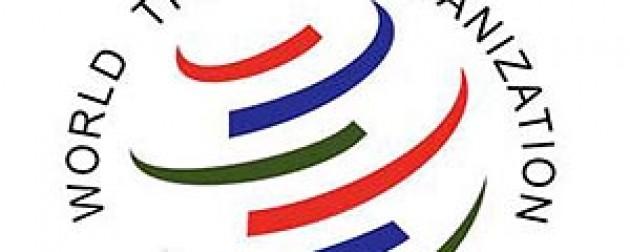 Azevêdo anuncia consultas sobre el futuro de las decisiones de Bali y del programa de trabajo posterior a Bali