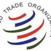 OMC: El Director General Azevêdo lanza un nuevo mecanismo para prestar apoyo a los PMA y los países en desarrollo