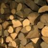 OMA: Es objetivo de la OMA e Interpol combatir el comercio de madera ilegal en Perú