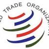 OMC: Azevêdo: Apoyo del sector privado es crucial para el futuro del sistema multilateral de comercio