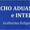 Derecho Aduanero e Internet. Guillermo Felipe Coronel