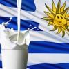 Uruguay: Exportaciones de lácteos uruguayos alcanzaron a 1.256 millones de litros en 2014