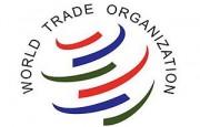 OMC – Un grupo de Miembros emite un compromiso conjunto sobre las compras de alimentos con fines humanitarios