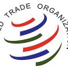 Azevêdo: Debemos garantizar que las políticas comerciales y en materia de cambio climático se refuercen y fortalezcan mutuamente