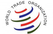 Jóvenes profesionales: ¡La OMC los necesita!