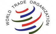 La OMC publica las ediciones de 2019 de algunas de sus publicaciones estadísticas más emblemáticas