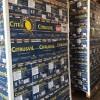 La Argentina exportó el primer cargamento de limones a Brasil luego de 8 años