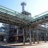 Argentina volverá a exportar aceite de soja a China