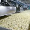 El agregado de valor de la agroindustria motoriza el crecimiento en diferentes regiones