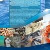 Chubut estará presente en Feria Internacional de Productos del Mar Congelados en España