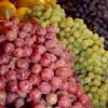 Nuevos productos de origen vegetal podrán ingresar a Indonesia
