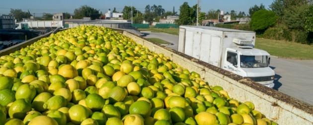 """Argenti Lemon logró el derecho de uso del sello """"Alimentos Argentinos, en una elección natural"""""""