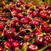 Las cerezas frescas ya pueden obtener el sello de calidad Alimentos Argentinos