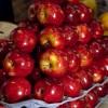 Crece la exportación de peras y manzanas a India