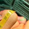 Agroindustria agiliza trámite de reintegros para productos exportados