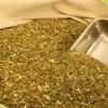 Récord en exportaciones y consumo interno de yerba mate