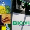 Biodiesel – EEUU: Inicia revisión de los derechos antidumping y compensatorios impuestos a las importaciones