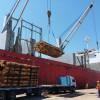 La reactivación portuaria genera un fuerte impulso a la industria forestal