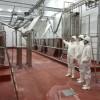 Avanzan las gestiones de frigorífico entrerriano para exportar carne a China