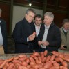 Etchevehere visitó una planta procesadora de batatas que exportará por primera vez a Inglaterra