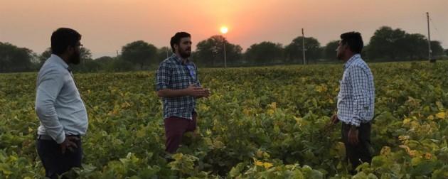 Argentina abrirá una Agregaduría Agrícola en India