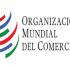 OMC – Los Miembros examinan las dificultades y las oportunidades del comercio de servicios en línea en la crisis de la COVID-19