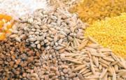 Se extiende inscripción en el sistema de autogestión para exportar granos a China