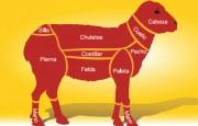 Exportación de carne ovina a China