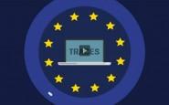 Exportar carne bovina. La UE y el control de comercio y sistema experto