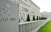 OMC – El comercio mundial disminuyó 14% en volumen y un 21% en valor en el segundo trimestre, en un contexto de confinamiento mundial