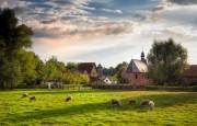 Principales elementos contenidos en la Estrategia de la Comisión Europea ¨de la granja a la mesa¨ – Editorial