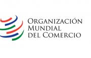 OMC – El grupo de trabajo sobre pequeñas empresas reflexiona sobre el plan de trabajo 2021