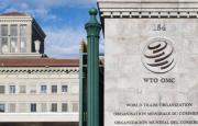 Publicación de la OMC sobre el comercio y el medio ambiente
