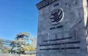OMC: el D.G.A., Agah, afirma que un comercio abierto y la inclusión económica serán cruciales para recuperarnos de la pandemia de COVID-19