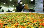 Mendoza – La exportación de hortalizas industrializadas con crecimiento sostenido