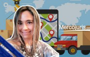 La logística y los desafíos de las empresas chilenas – Mg. Angélica María Barría Díaz (desde Chile)