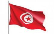 Plataforma Hannibal – Control de Ilícitos transnacionales – Maher Bouhenni (desde Túnez)