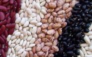 Argentina mejora las condiciones para sus exportaciones de porotos a México
