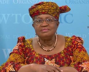 OMC – Los Miembros trazan el rumbo de las negociaciones de otoño sobre las subvenciones a la pesca y otras cuestiones de cara a la CM12