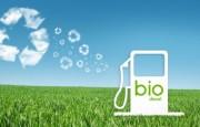 Biodiesel – Fallo contra Argentina
