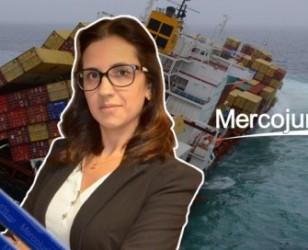 Tributacão de mercadorias extraviadas ou avariadas – Mg *Paula Jacques Goulart (desde Brasil)